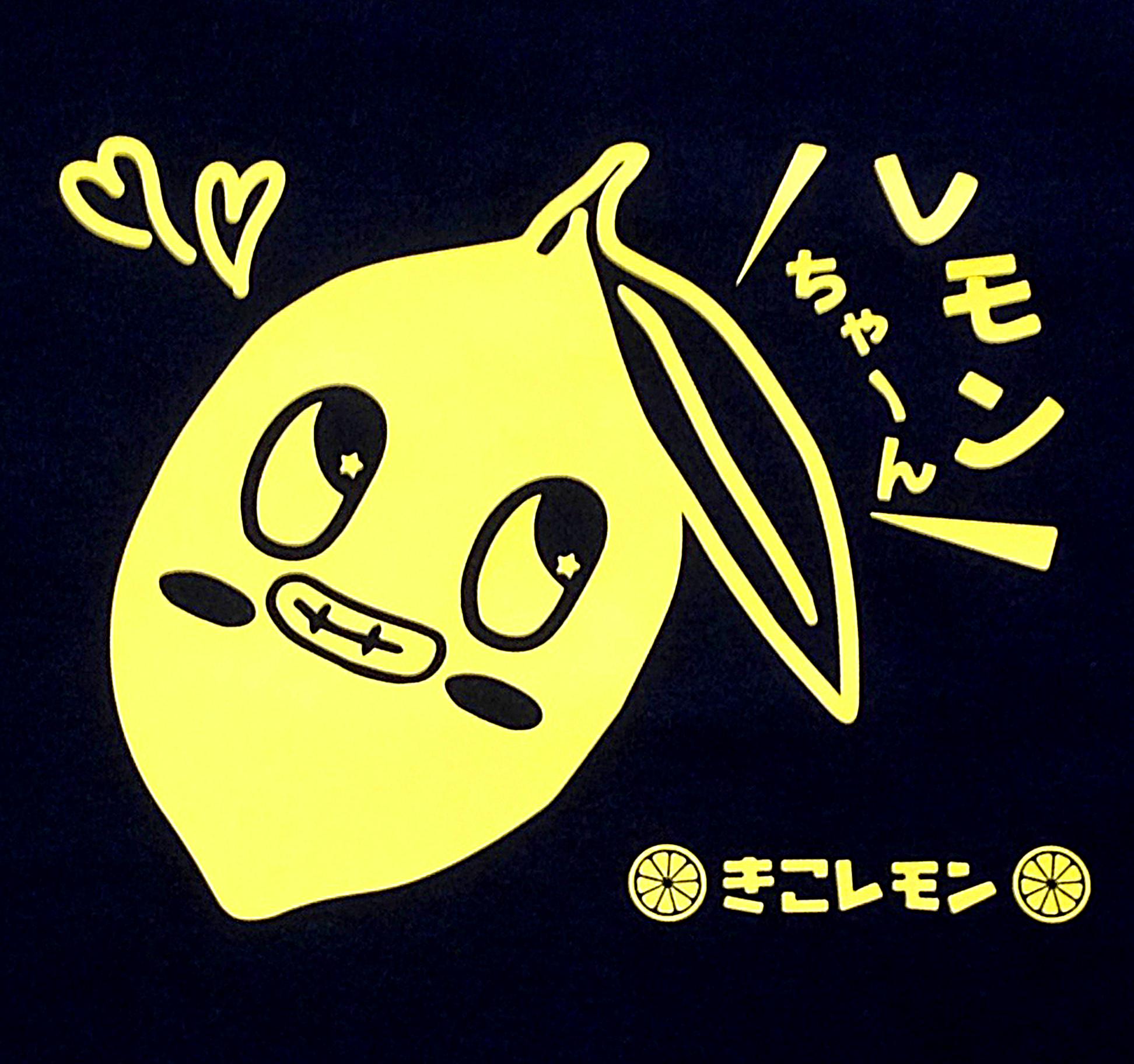 オリジナルキッズTシャツ_きーちゃん編☆
